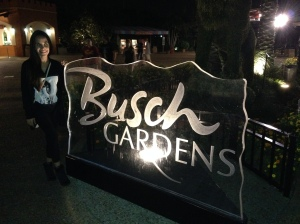Busch Gardens after dark